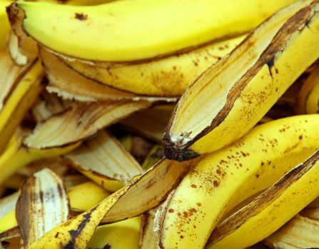 banana-peels-in-the-composter-for-humus-xs