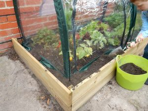 2m Poly Tunnel