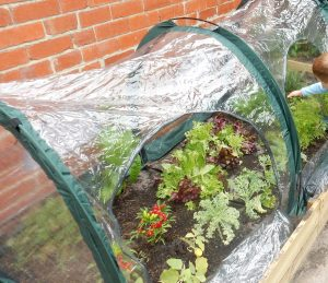 3m Poly Tunnel