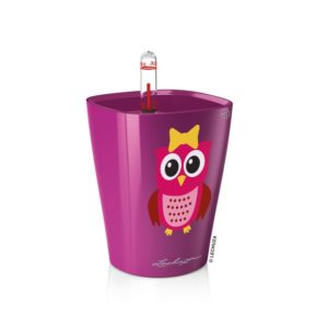 Mini Deltini (Owl Collection)