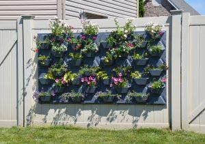 Plantscape Hex
