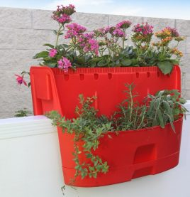 Saddle-Planter