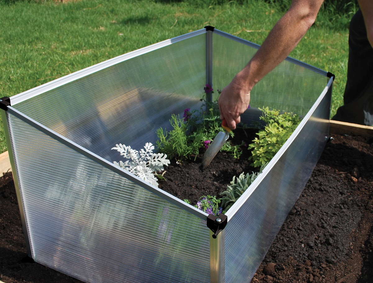 Single Cold Frame | Maze Products