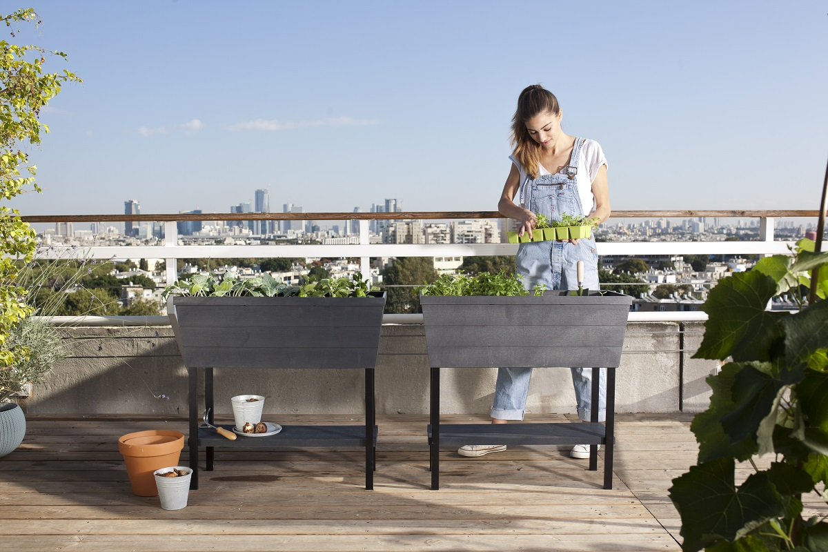 Keter Urban Bloomer Maze Products